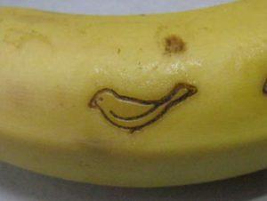 鳥の焼印をバナナへ