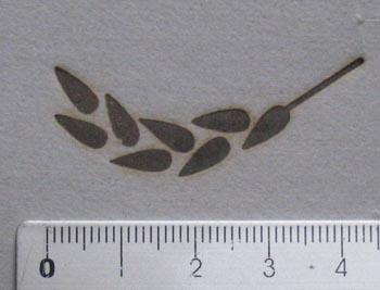 稲穂の焼印