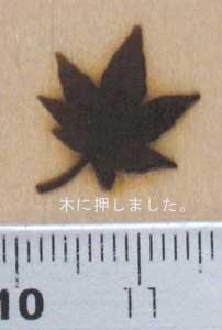 楓焼印を木へ