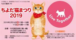 2019猫祭り